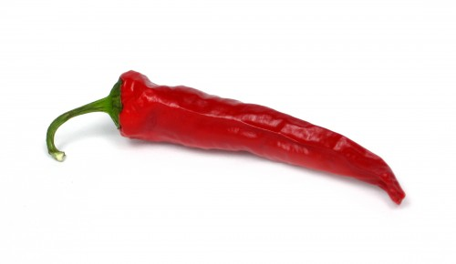Hot chili pepper!