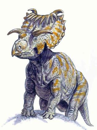 What we think the Kosmoceratops looked like