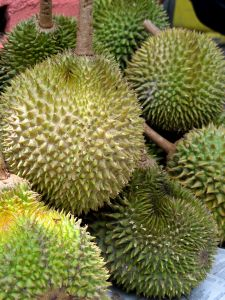 Durians are spikey!