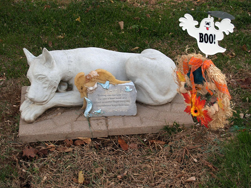 A pet cemetery (not in the Derbyshire)