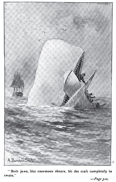 Did the whale really trap Moby Dick?